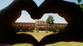 1414848654_home_economics_college_peshawar_university